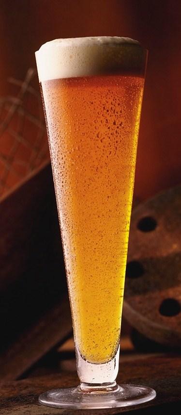 bier vitamine b